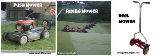Mower Collage